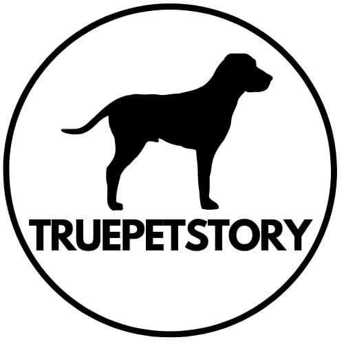 True Pet Story : Guides & Product Reviews for your Pet